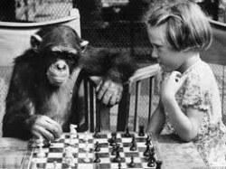 Foto: www.chess.com