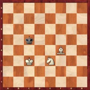 Den sorte konge skal mod a1 eller h8